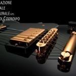 Domenica 3 novembre: seminario con il chitarrista jazz John Stowell